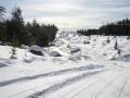 A Trail East Atikokan