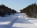 DPTC A Trail to Stewart Lake